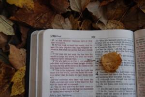 bibleOpenJohn